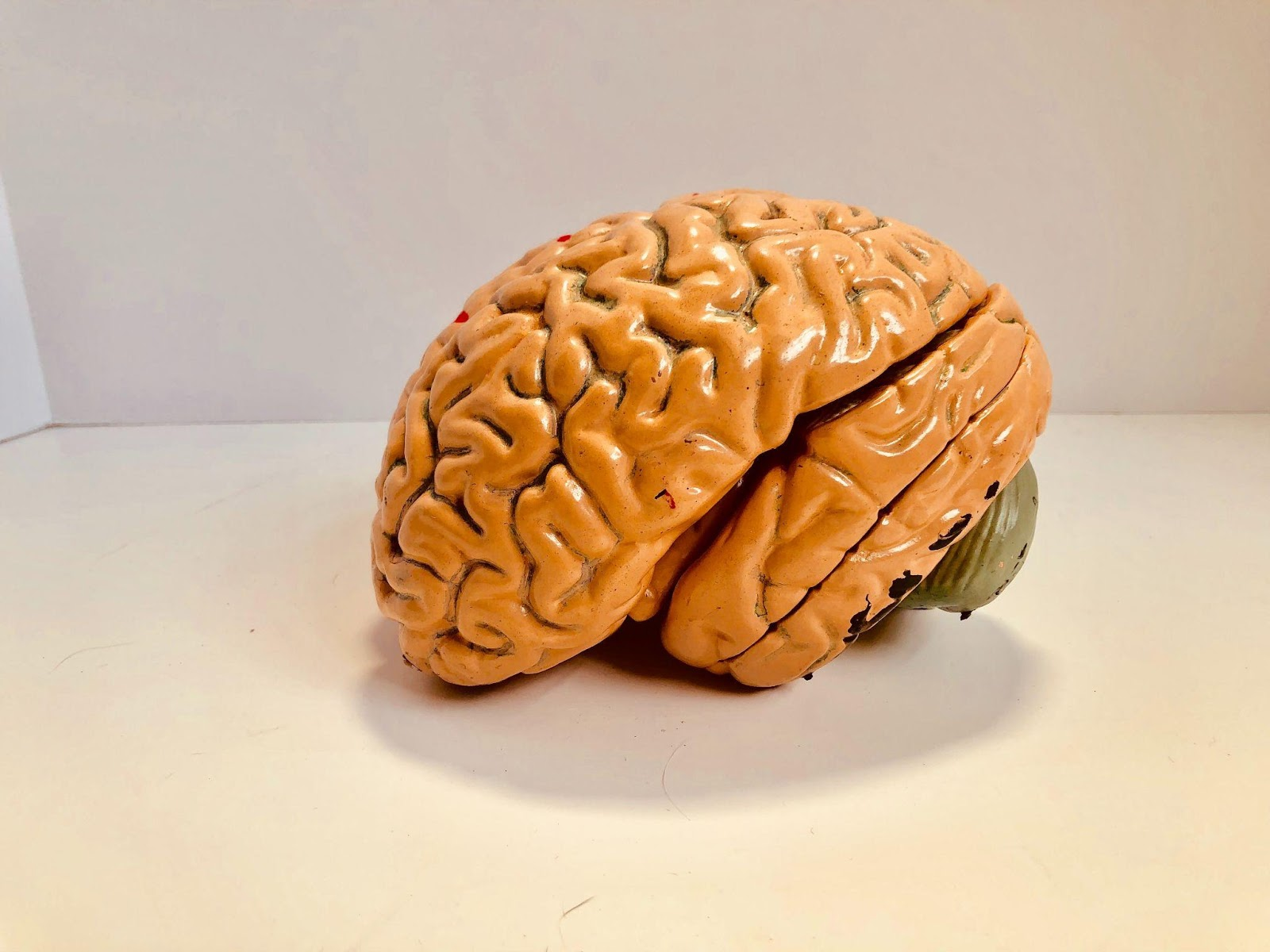 Memory Training, Training Exercises, improve memory, how to improve your memory